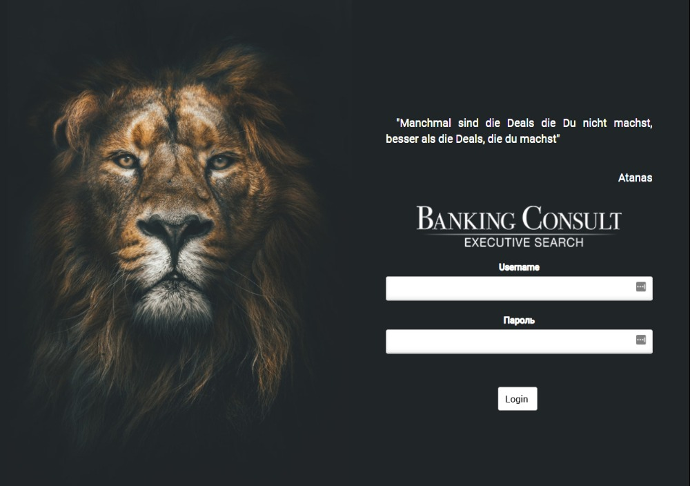 Banking Consult custom CRM system