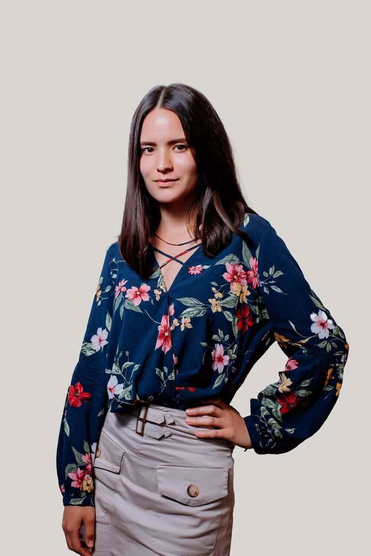 Alisa QA Engineer